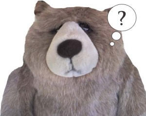 Questioning Big Rankin Bear