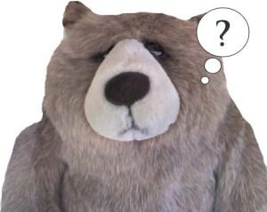 Questioning Big Rankin Bear