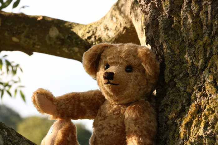 Edward Bear as Portrayed in 2018 Film Christopher Robin.jpeg